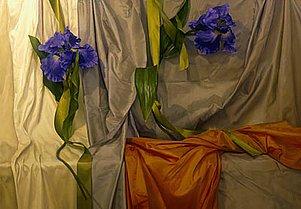 Judith Goldsmith